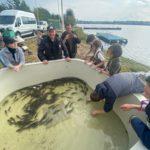 Компенсационные мероприятия на  Нижне-Тагильском водохранилище